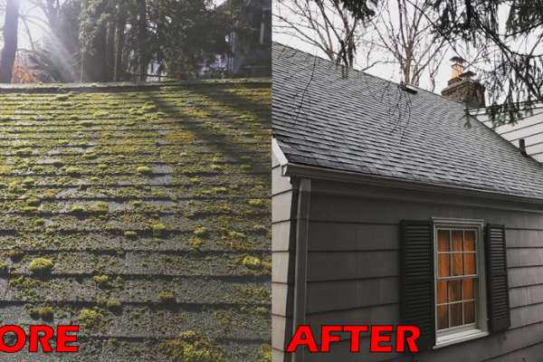 mcdundee-powerwashing-power-washing-roof-cleaning-nj-morris-pressure-washing-deck-house-home-paver-patio-roof-wash-27B8AD6F9-53E5-DF12-ACE1-69EEF8BF8D98.png