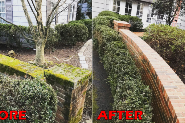 mcdundee-powerwashing-power-washing-roof-cleaning-nj-morris-pressure-washing-deck-house-home-paver-patio-wall1CB72D74-13AB-DF60-2824-BFA92CDFAEC1.png